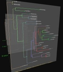how to make a phylogenetic tree from dna sequences